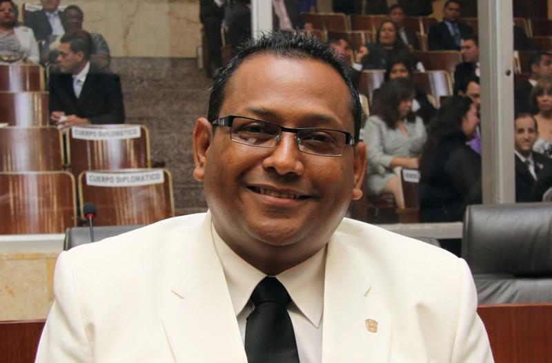 Diputado Raúl Pineda